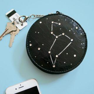 DIY Constellation Clutch